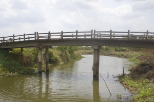 bridge_vietnamese